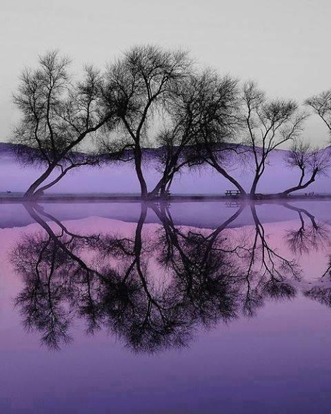 reflet, merveilleuse pensées